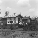 1998-1057 Tuinhuisjes op Volkstuincomplex Blijdorp aan de Zestienhovensekade.