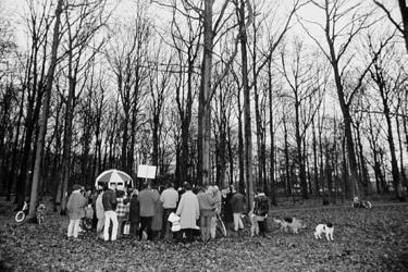 2000-1035 Actievoerders protesteren in het Kralingse Bos tegen het kappen van bomen ten behoeve van het jaarlijkse ...