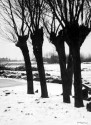 2001-1228 Het besneeuwde poldergebied bij de Westzeedijk.