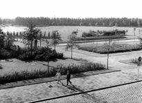 2004-5857 Gezicht in het Vroesenpark.