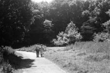 2005-11073-TM-11075 Het Kralingse Bos:Van boven naar beneden:-11073: In het Kralingse Bos.-11074: In het Kralingse Bos ...