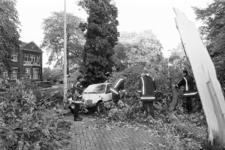 2005-11206 In de Parklaan zijn bomen op auto's gevallen, als gevolg van stormschade.
