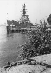 2005-6107 Amerikaans vlootbezoek. Bij de Parkkade.