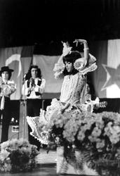2005-9059-TM-9064 Multicultureel festival in de Doelen.Van boven naar beneden: -9059: Een Spaanse danseres.-9060: Een ...