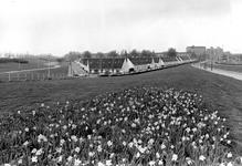 2005-9555 Het Witte Dorp gezien vanaf de Schiedamseweg.