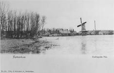 VIII-41 Gezicht op de Kralingse Plas. Op de achtergrond molen 't Lam.