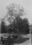 XXV-327-01-00-00-02-4 Tuin van de buitenplaats Woudenstein aan de Honingerdijk.