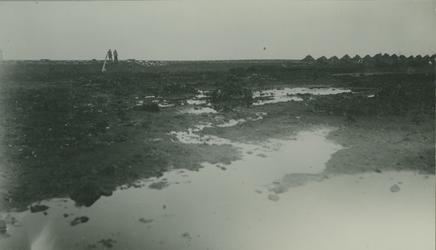 XXXIII-317-1-TM-3 Overblijfselen van een oerbos aan de Kralingse Plas.Afgebeeld van boven naar beneden.-1-2-3