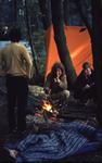 2006-47-041 Diareportage van het Holland Popfestival in het Kralingse Bos (41): jongeren bij een kampvuur.