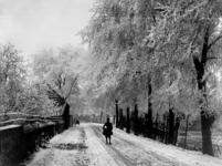 XXXI-395-01 Overschieseweg bij tol in de sneeuw.