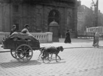 XXXIV-34-8 Gezicht op de Coolsingel met de Delftse Poort. Op de voorgrond een venter met hondenkar.