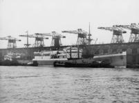 1976-14468 Het laden en lossen van een vrachtschip aan de zuidzijde van de Rijnhaven, bij de Holland Amerika Lijn.