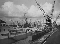 1976-14475 Vrachtschepen aan de kade van de Merwehaven, bij rederij Müller & Co voor laad -en loswerkzaamheden met ...