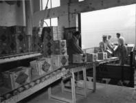 1976-14508 Het transporteren van plaatkoeken in het productiebedrijf van het Centraal Bureau aan de Rijnhaven zuidzijde ...