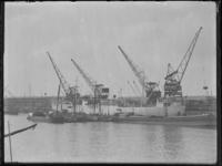 1976-4596 Aardappelen laden in het Noorse koelschip Scebeli bij C.S.S.U. (bestemd voor Buenos Aires).