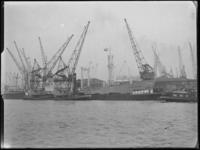 1976-6109 Hout lossen van hout vanaf het schip de Ellen Maersk aan de Merwehaven, bij de firma Corn. Swarttouw. Uit het ...