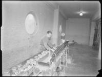 1976-6224 Driehoek Sodablikken op de lopende band in de soda- en chemicaliënfabriek van Kortman en Schulte aan de ...