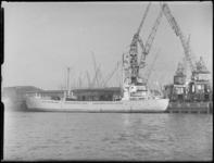 1976-7287 Op de voorgrond een schip in de Merwehaven bij Cornelis Swarttouw's stuwadoorsmij.