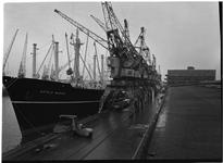 1976-7771 Het schip de Astrid Bakke lost goederen aan de kade van de Merwehaven.