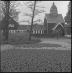 11613 Bloemen in Park (Westzeedijk) ter hoogte van Noorse kerkje.
