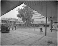 12007 Plein bij Lijnbaan met oude plataan (1851), het Lijnbaancentrum, het warenhuis Ter Meulen en kledingzaak Gerzon.