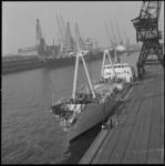 12388 De Zweedse coaster Polar Viking, ter hoogte van het het lichtschip Westhinder tijdens dichte mist in aanvaring ...