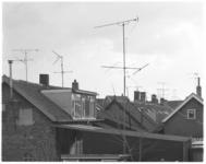 13398 Televisie-antennes op de daken in Pernis voor beter beeld.