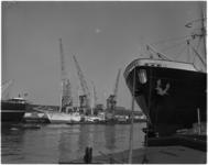 1360 Zweedse viermaster Albatross aangemeerd bij havenbedrijf Thomson in de Lekhaven.