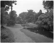 13849 Sfeeropname van Arboretum Trompenburg aan de Honingerdijk.