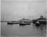 1806 Drie sleepboten van L. Smit actief in de Botlek: de Apollo, de Alblasserdam en en de Argus.