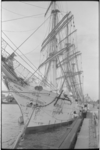 20013-50-35 De driemaster Dar Pomorza (1909), een Pools opleidingsschip, aan de Parkkade.