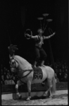 20014-44-9 Circusact in Circus Sarassani in een circustent op de Sint-Jacobsplaats.