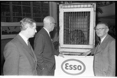 20032-34-38 Sumatraanse tijger 'Paul' aangeboden door C. R. Smit, president-directeur van de ESSO, aan Diergaarde ...