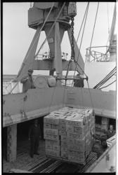 20036-76-0 Bananen uit Ecuador worden gelost in de Eemhaven bij havenbedrijf Quick-Dispatch.