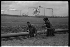 20465-6-39 Fretten worden ingezet tegen de konijnenoverlast bij de Caltex-raffinaderij in het Europoortgebied.