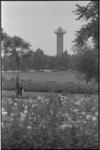 21037-5-2 Het zuidelijk deel van het Vroesenpark nabij de Stadhoudersweg met zicht op de uitkijktoren van Diergaarde ...