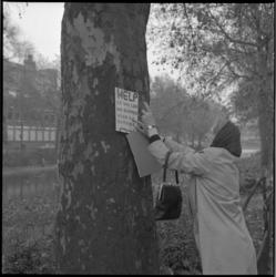 22301-3-3 Mevrouw bevestigt protestbord op boom om rooien daarvan te voorkomen.