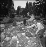 22630-1 J.R.P. van Hoey Smith geeft uitleg over planten in het Arboretum Trompenburg aan de Honingerdijk.