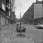 24042-1-3 Nieuwe aanplant van bomen in de Hoevestraat.
