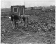 289-1 Moestuin nabij Oldegaarde hoek Dorpsweg.
