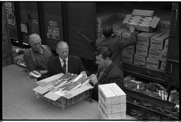 304482 Controle van dozen dadels bij een spoorwegwagon. Vermoedelijk bij Thomsen's Havenbedrijf aan de Keilehaven.