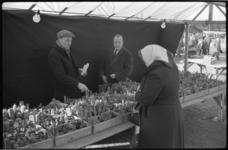 3050-3 Verkopers van cactussen op de markt aan de Binnenrotte.