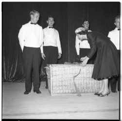 3303-3 Mevrouw M. Flipse-Broeders opent in het Rijnhotel het Falstaff-restaurant en het snelbuffet De Triangel.