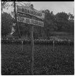 3319-5 Inrichting van de Koningshof op de wereldtuinbouwtentoonstelling Floriade in Het Park.