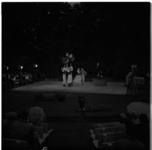 3446 Publiek in openluchttheater Dijkzigt kijkt naar Poolse dansgroep Polski Zespol Tanca.