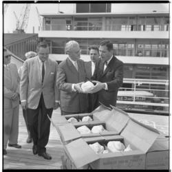 3453-2 Loco-burgemeester van Rotterdam, J.U. Schilthuis, krijgt aan boord van de Prinses Irene kalkoenen aangeboden- ...