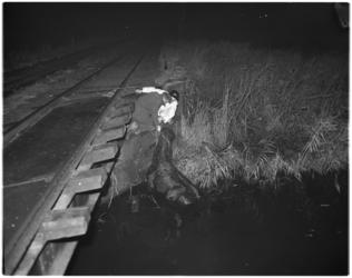 3688-1 Paard te water in Charlois naast RTM-spoor.