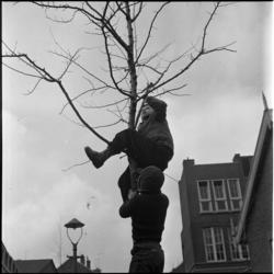 403-1 Jongens klimmen in boom.