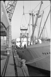 4665-1 Lossen van een lading sinaasappelen vanaf schip.