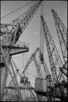4875-1 Een havenkraan hijst een vrachtcontainer bij Pakhuismeesteren.